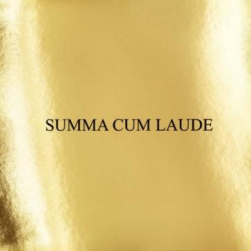 Domenico Crisci - The Violinist - Summa Cum Laude - SCL001