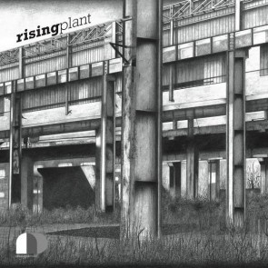 XeRoSoReX , *SOUR* - Rising Plant - Analogic Density - ANLD 002